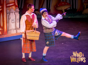 Image for Wind in the Willows